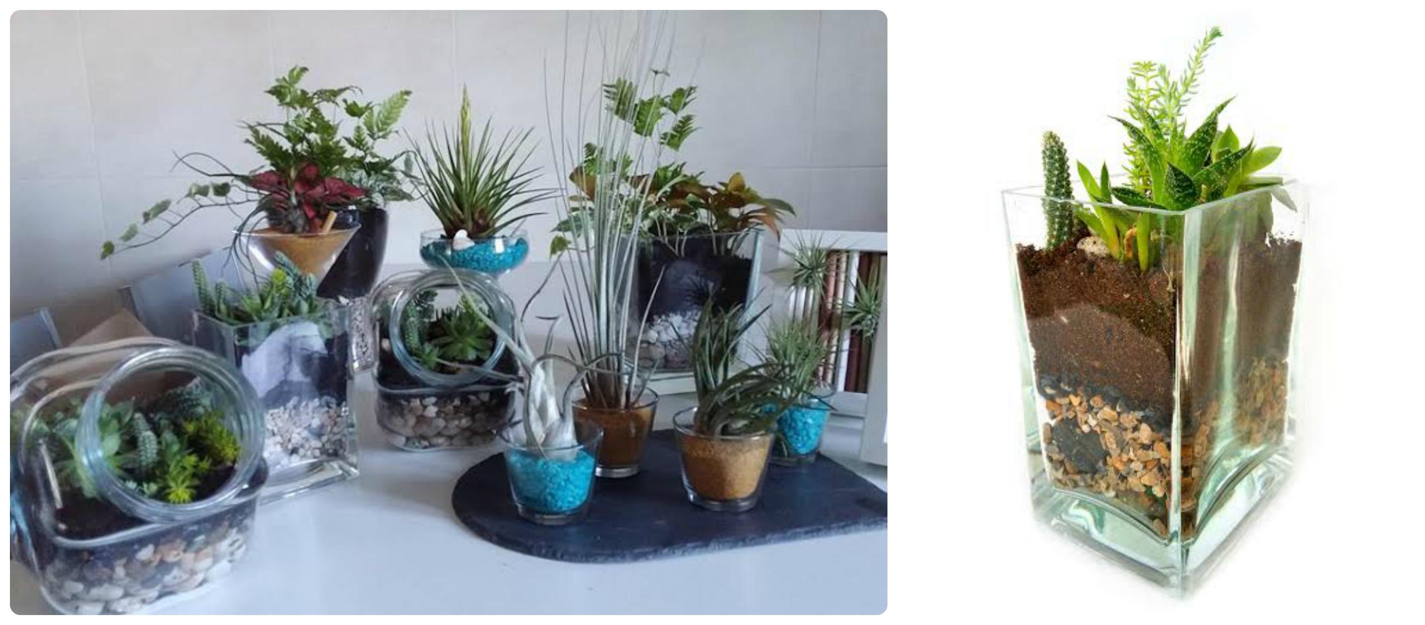 Locales y puestos 2demayobilbao for Plantas crasas interior
